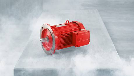 Explosion-proof AC motors